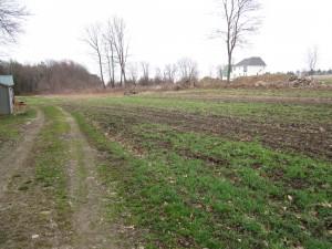 field on arrival