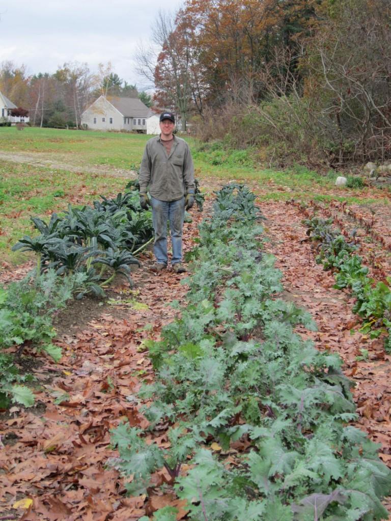 Final Kale of the season